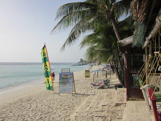 Bananarama Beach and Dive Resort: beach front at Bananarama