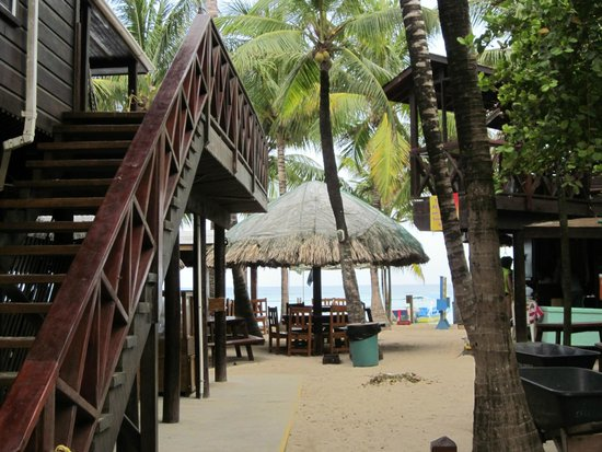 Bananarama Beach and Dive Resort: View from Rooms 15 & 16
