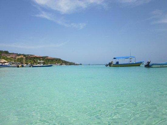 Bananarama Beach and Dive Resort: water in front of Bananarama