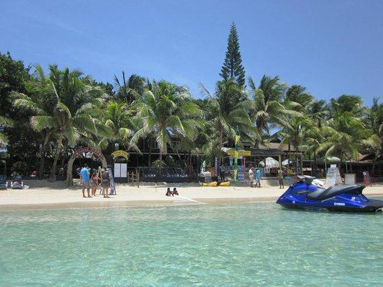Bananarama from water picture of bananarama beach and for Roatan dive resort