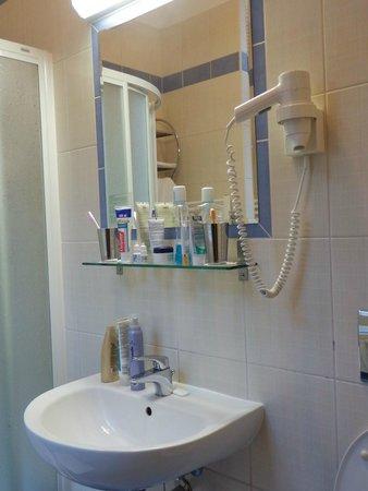 Hotel Central Basilica: Enda avställningsytan i toalett/dusch rum