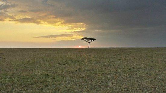 Mara Explorer Camp: Beautiful sunset