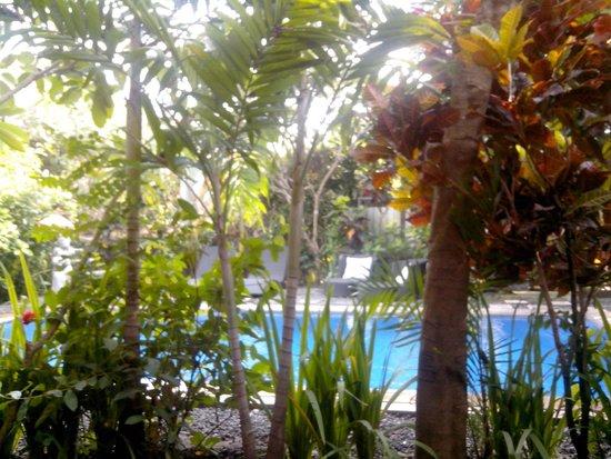 Tropical Bali Hotel : la piscine depuis la terrasse de la chambre