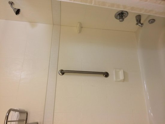 Hilton Garden Inn Ottawa Airport : Shower head height