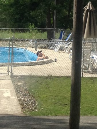 Al & Sally's Motel : Relaxing at the pool