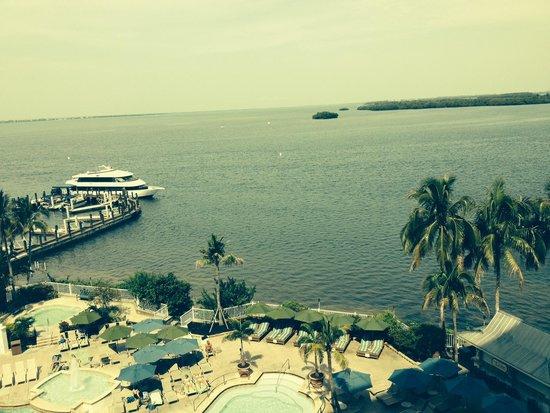 Sanibel Harbour Marriott Resort & Spa : view from my room