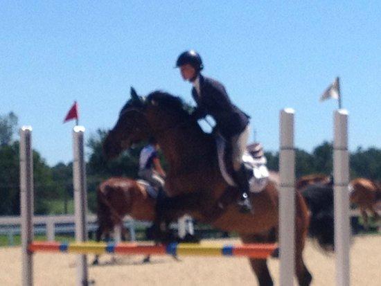 Kentucky Horse Park: 2014 Kentucky Horse Show