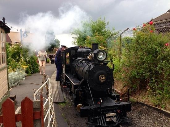 Cleethorpes Coast Light Railway: one of the trains