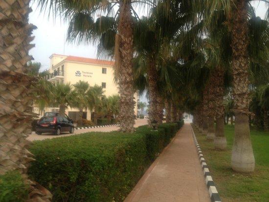Anmaria Hotel: Дорога к отелю с главной улицы Nissi авеню