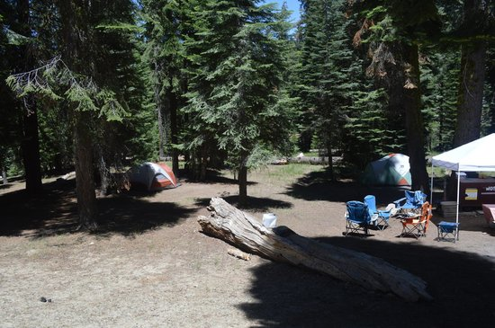 Dorst Campground: Campsite 105