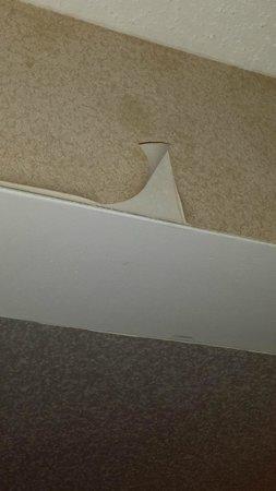Comfort Suites Benton Harbor: Peeling wallpaper over arch facing bed