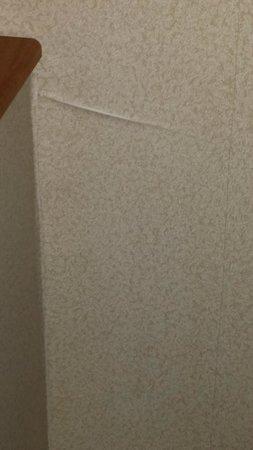 Comfort Suites Benton Harbor: Peeling wallpaper on wall