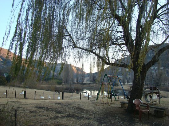 Lake Clarens Guest House: View from patio