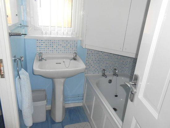 Tolroy Manor Holiday Park: downstairs bathroom