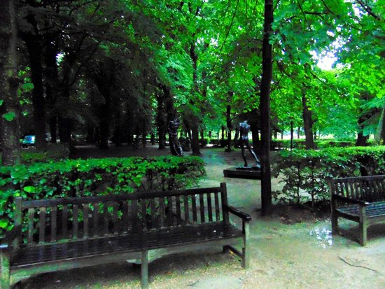 Musée Rodin : Grove