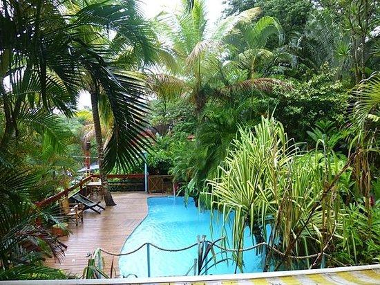 Tendacayou Ecolodge & Spa: piscine