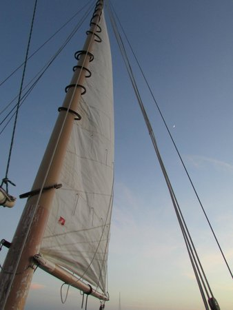 Danger Charters: The sail