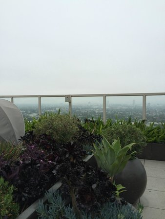 Andaz West Hollywood : view from pool