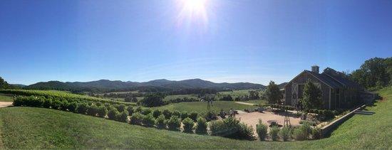 Pippin Hill Farm & Vineyards : Beautiful mountains