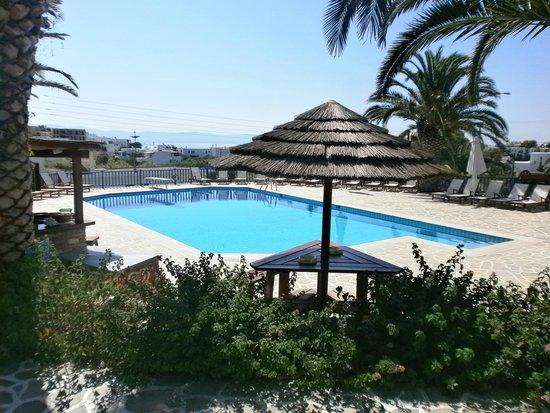 Albatross Hotel: piscine
