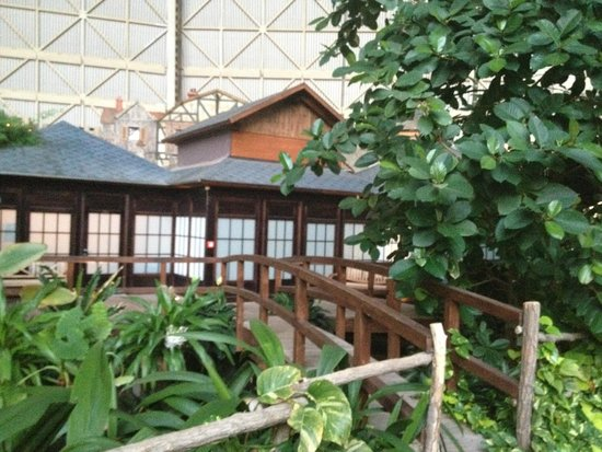 Tropical Islands Resort : the view of resort