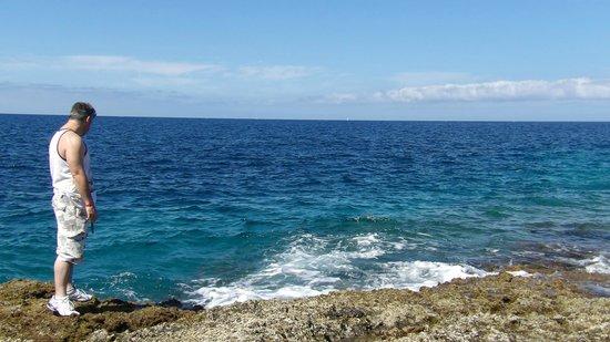 ClubHotel Riu Buena Vista: Around the area near the waters edge