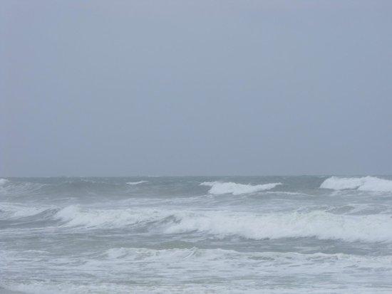A Place at the Beach III : We made it through Hurricane Arthur well!