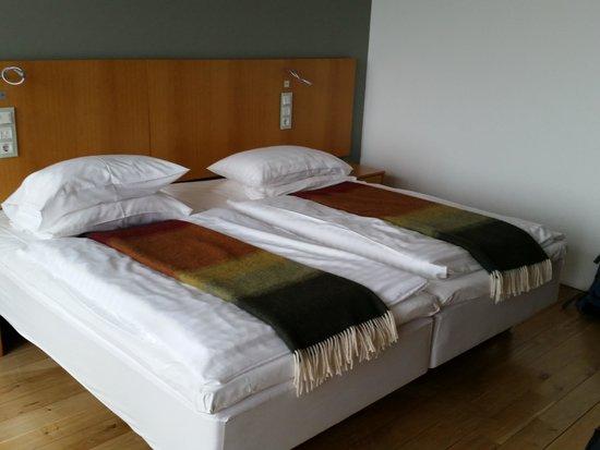 Silica Hotel : Room