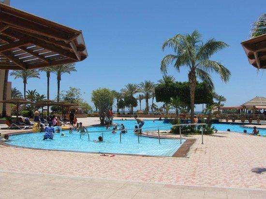 Hurghada Marriott Beach Resort : Pool area.