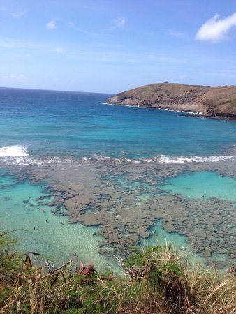 Hanauma Bay Snorkel Adventures