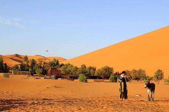 Camel Safari Camp Aufnahme