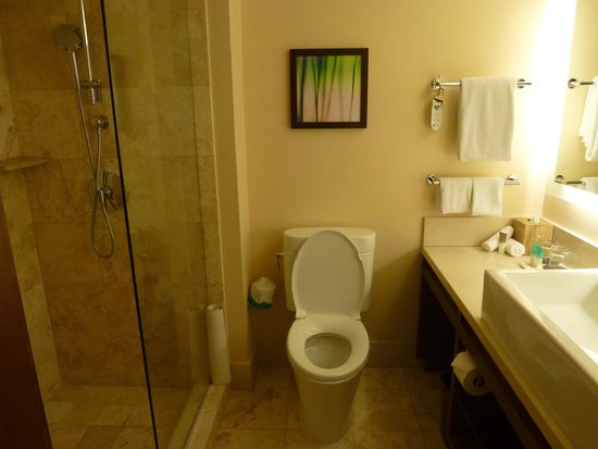 Hyatt Regency Monterey Hotel and Spa on Del Monte Golf Course : Bathroom