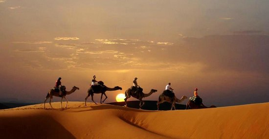 Camel Safari Camp: When you dont have the whole day and just cant miss out the sunrise on the sand dunes on camel r