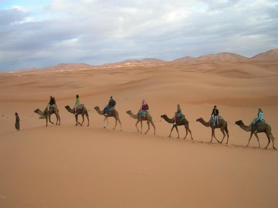 Camel Safari Camp: The most famous camel ride of our desert safaris Spend an overnight in the desert under the star