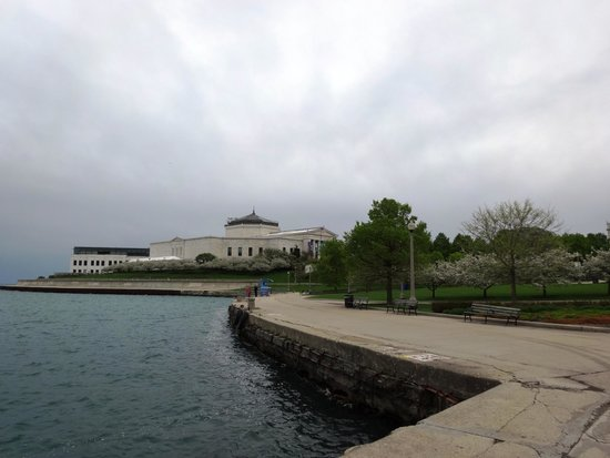 The Field Museum and Shedd Aquarium