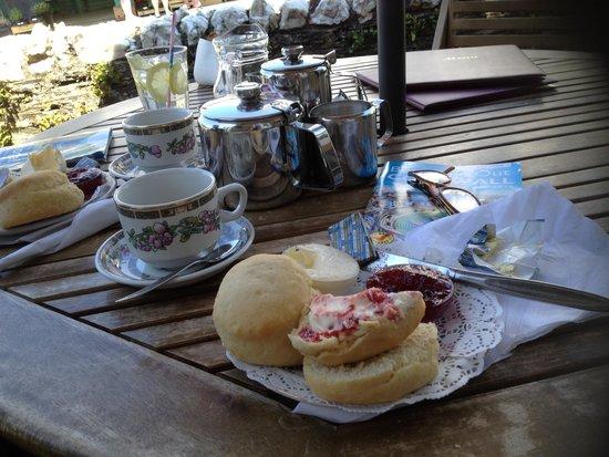 Cream Tea Bild Von The Village Tea Rooms Tintagel