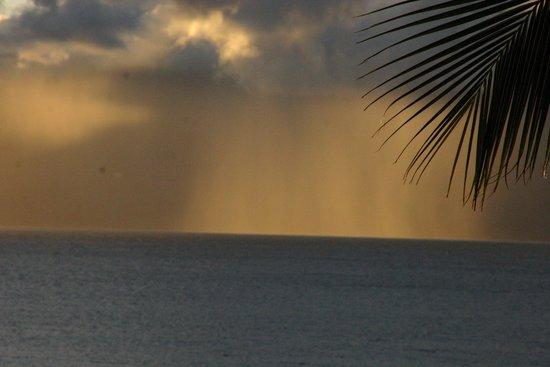 Hono Koa: Misty rains over Molokai