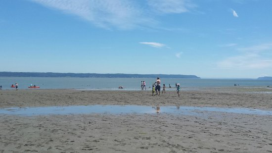 Camano Island, WA: Iverson Beach during low tide