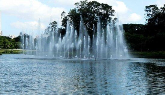 Parque do Ibirapuera: 1º lago - onde ocorre as apresentações