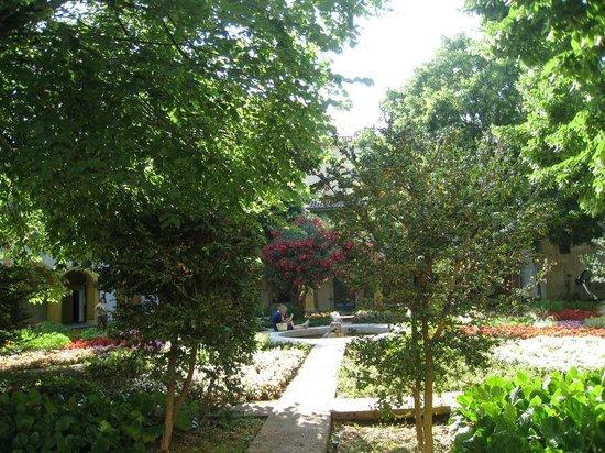 Espace Van Gogh: Jardín del asilo donde estuvo recluido Van Gogh