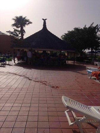 Royal Belvedere : Pool side bar