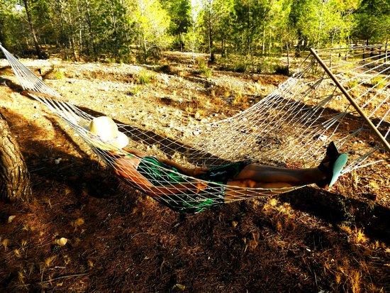 Awa Natura: Hängematte hinterm Zelt