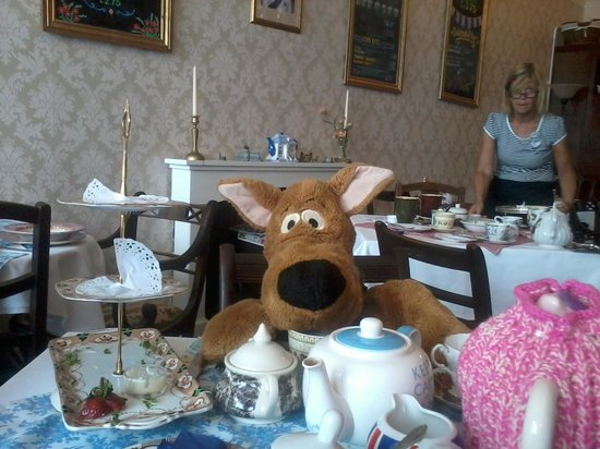 Little British Tea Shop: Scooby Doo loved it!