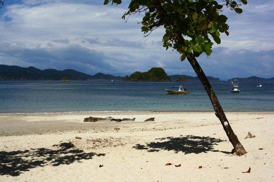 Bahia Rica Adventures: Isla Tortuga