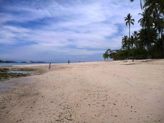 Bahia Rica Adventures: Isla Tortuga - white sand beach