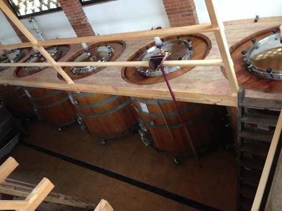 Tuscan Wine Tours By Grape Tours Tripadvisor