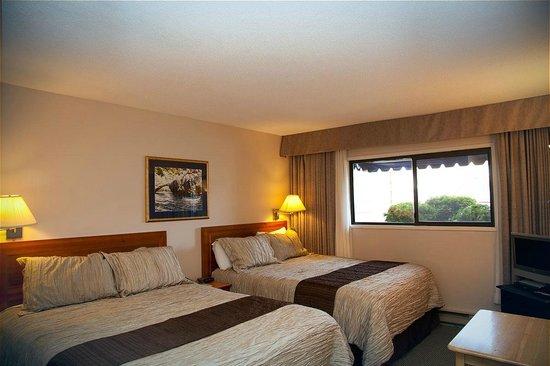 Sidney Waterfront Inn & Suites: Townside room