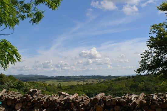 Fattoria Barbialla Nuova: Amazing view