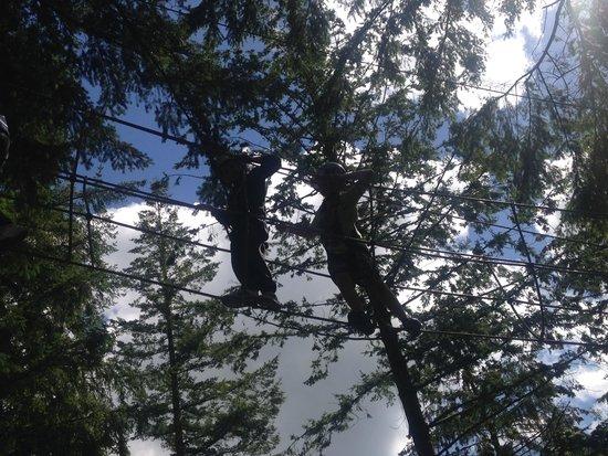 Zip World Fforest: dont look down lol