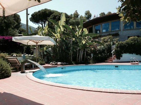 Hotel Gallo Nero : Swimming Pool